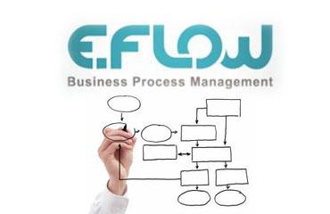 E-Flow İş Akışı Yönetimi